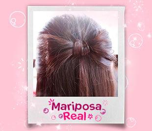 Peinado Mariposa Real